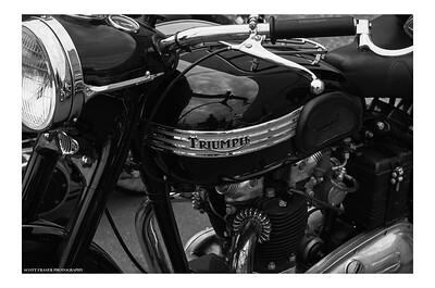 Classic Monochrome Triumph