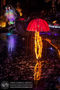 Autumn Lights Festival - Oakland. The Gardens at Lake Merritt.