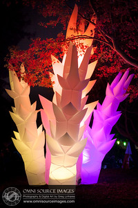 Autumn Lights Festival - The Gardens at Lake Merritt. Oakland, CA.