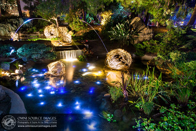 Autumn Lights Festival - Oakland. The Gardens at Lake Merritt. Artist: Keiko Nelson - www.keikonelson.com
