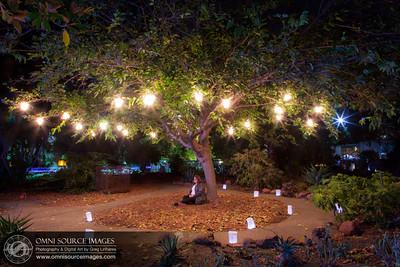 Autumn Lights Festival - Oakland. The Gardens at Lake Merritt. Artist: Sarah Lowe - www.slowe.org