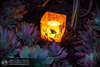 Autumn Lights Festival - The Gardens at Lake Merritt. Oakland, CA. Artist: Brooke Levin