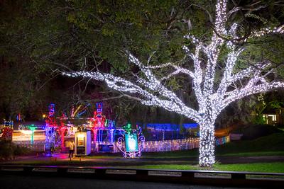 Oakland Zoo Lights