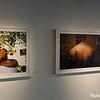 """Unison"" at Snap! Gallery, Orlando, Florida - 13th October 2016 (Photographer: Nigel G Worrall)"