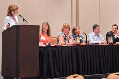 12 Laurie introduces the panel