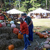 Darlene jumps in and places pumpkins.