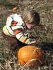 Eva, giving pats to pumpkins.<br /> October 28, 2006