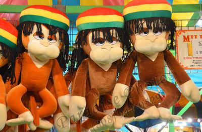 3 cool monkies 0212 147b