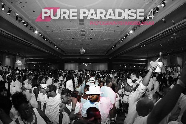 Pure Paradise 4      8.15