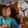 Twelve-year-old Madison Thomas relaxes with her Hereford heifer on Monday morning at the Putnam County Fair that she brought in on Saturday. Steers and hogs were brought in on Monday morning. Fran Ruchalski/Palatka Daily News