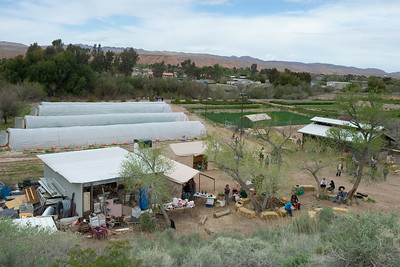 Quail Hollow Farm CSA Moapa Valley community supported agriculture offering the freshest grown produce grown locally to serve the community. For a weekly basket of organic vegetables, fruits, herbs, cheese, flowers delivered to your home Contact Laura and Monty Bledsoe at 702-397-2021 Email quailhollowfarm@mvdsl.com Visit Quail Hollow Farm website www.quailhollowfarmcsa.com Photographs in this public online gallery free downloads for Quail Hollow Farm by Mark Bowers of ReallyVegasPhoto.com