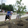 Dave Cooney from the Melon City Bike Club plants a tree in overnight RAGBRAI cities.  Tree #65 is on 19th Avenue NW!<br /> <br /> Photographer's Name: Pam Petersen<br /> Photographer's City and State: Clinton, IA