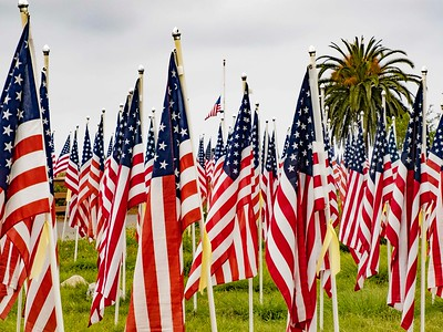 Field of flags with flag at half mast honoring those who have died for our country.