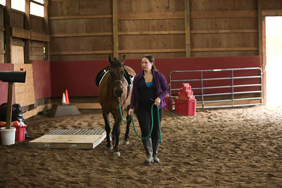 Rach Riding Academy Obstacle Course and Gypsy