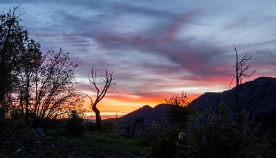 Zion Sunrise II