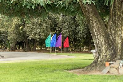 Rainbow-0028