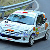 SION, SWITZERLAND - OCTOBER 30: Jerome Dubey of the Lugano Racing Team in a Peugeot 206 in the International Rally of the Valais : October 30, 2011 in Sion Switzerland