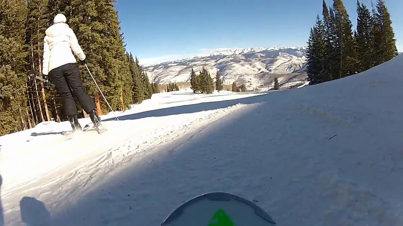 I used the large suction cup mount on the flat portion of my ski . . . until it fell off.
