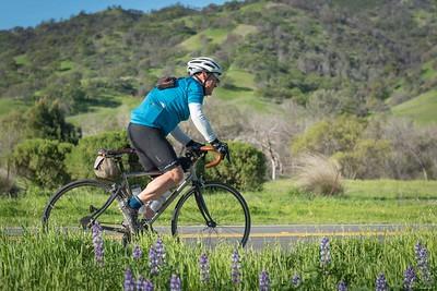 DBC 300k Cobb Mtn Brevet, Yolo County, California