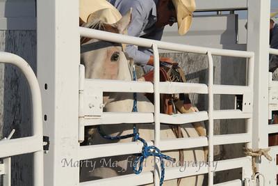 Raton Rodeo_0771