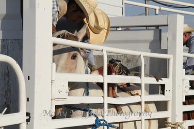 Raton Rodeo_0772