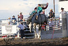 Raton Rodeo Friday Night_2518