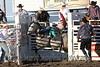 Raton Rodeo Friday Night_2515