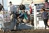Raton Rodeo Friday Night_2516