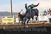 Raton Rodeo Friday Night_2520