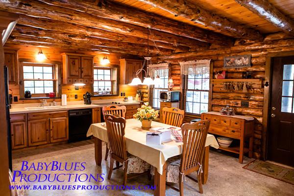 Log Cabin House - 12 Jul 12
