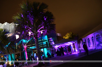 Sarasota Film Festival 2013 Opening Night