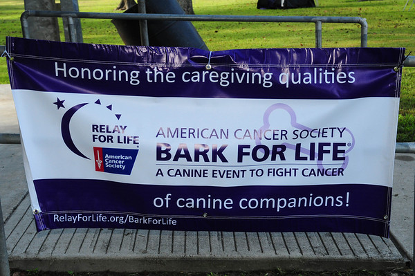 Bark For Life 2013 - 10/5/13