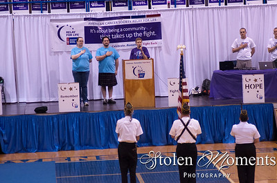 Relay for Life (2014)