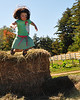 Maisie Brown, of Madison, NH, leaps into a large pile of hay, during the Harvest Festival at The Remick Country Doctor Museum & Farm in Tamworth, on  Saturday, September 26th.