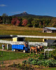 Mt. Chocorua, from The Remick Country Doctor Museum & Farm, Tamworth, NH.