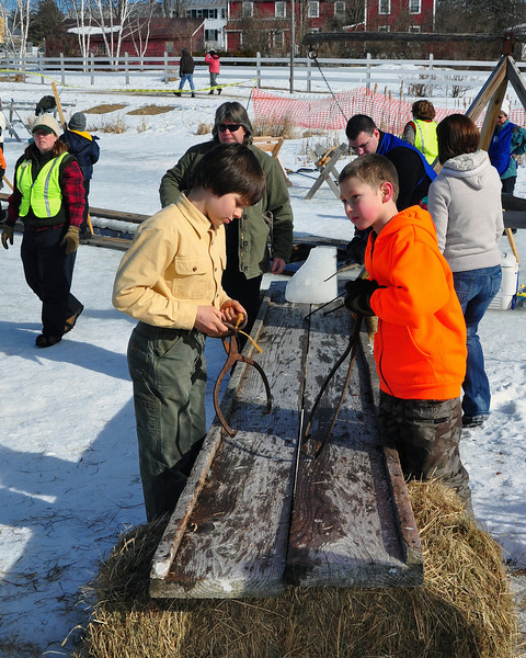 These youngsters help load blocks of ice onto steer-drawn sleds, for delivery to the ice house, at The Remick Country Doctor Museum and Farm, in Tamworth, NH, on Saturday, February 13, 2010, as part of the annual Ice Harvesting and Winter Carnival event.