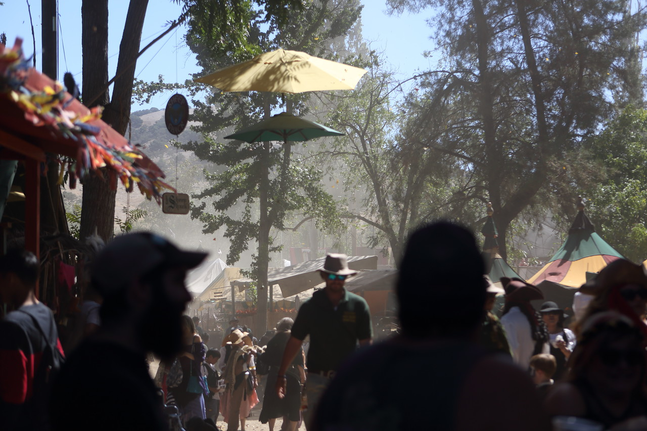 The faire this year has had much more comfortable temperatures than most faires from previous years that I've been to.  This was probably the worst moment of my two days there, when a strong gust of wind kicked up a lot of dust and small debris.