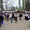 Renaissance Faire 2009 001
