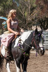 Fairy rider.