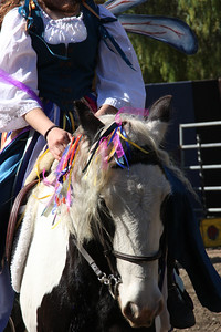 Fairy rider's horse.