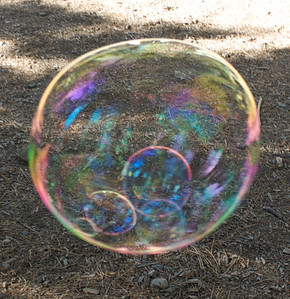 Bubble Fairy 14
