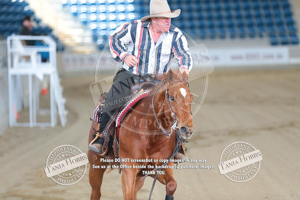 QLD Reining State Show 2016