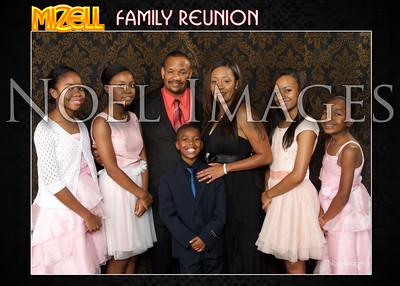 2014 Mizell Family Reunion