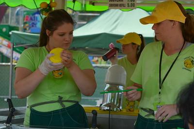 Ribfest 2017 - Naperville, Illinois - Vendors