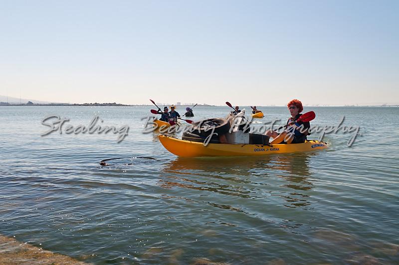 Flotsam Flotilla returns