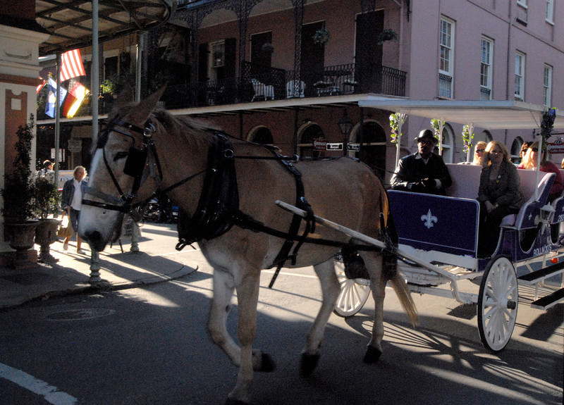 French Quarter - Carriage Ride