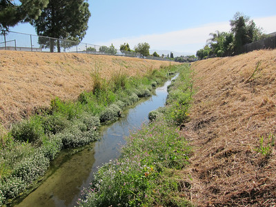 The sides of the creek channel are quite steep, and the trimmed grass made them a bit slippery. Still, not too hard to walk alongside the creek most of the way.