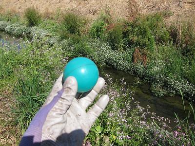 A small, lightweight, green plastic ball.