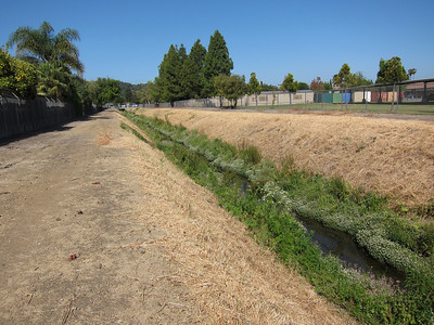 Canoas Creek runs in a straight, concrete-floored channel with dirt service roads along either side and housing behind the fences.