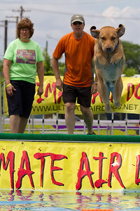 I just love the dog jumping competions.  This was the Ultimate Air competition.  Check out the dogs ears.